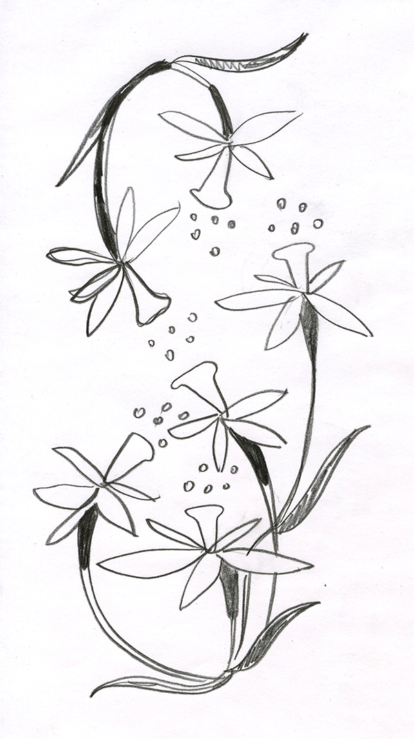 Kresba A Trenink Ruky
